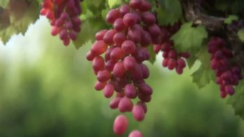 Grapes From California TV Spot, 'Grapes: The Healthy Snack' - Thumbnail 3