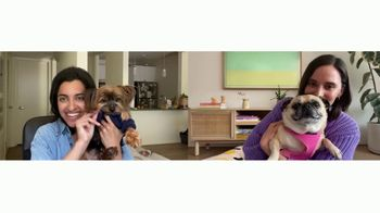 Chewy.com TV Spot, 'Pets Bring Us Together' - Thumbnail 2