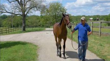 Claiborne Farm TV Spot, 'Runhappy: Stamina' - Thumbnail 9