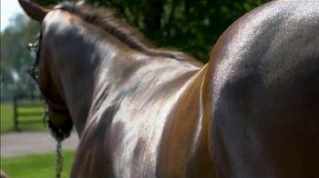 Claiborne Farm TV Spot, 'Runhappy: Stamina' - Thumbnail 5