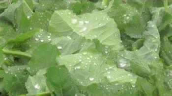 Balance of Nature TV Spot, 'Vine-Ripened Fruits and Vegetables' - Thumbnail 3