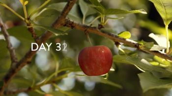 Air Wick Scented Oils TV Spot, 'Apple Orchard' - Thumbnail 6
