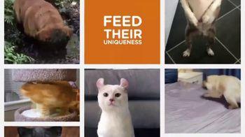 Iams TV Spot, 'Pet Remix' - Thumbnail 5
