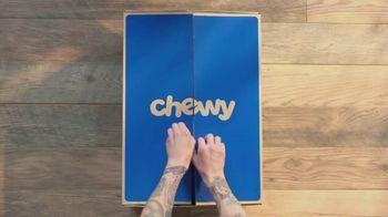 Chewy.com TV Spot, 'The Walk' - Thumbnail 1