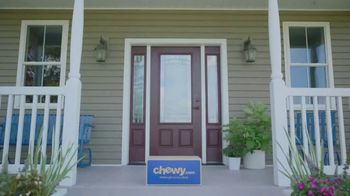 Chewy.com TV Spot, 'The Walk' - Thumbnail 9