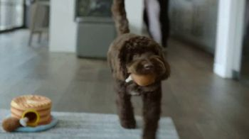 Chewy.com TV Spot, 'Chow Time' - Thumbnail 6