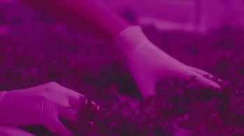 Fiverr TV Spot, 'Transformation Stories: Greener Roots' - Thumbnail 7