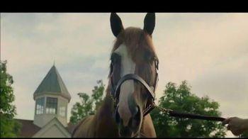 Lane's End TV Spot, 'Catalina Cruiser'