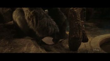 Disney+ TV Spot, 'The One and Only Ivan' - Thumbnail 2
