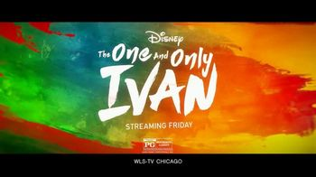 Disney+ TV Spot, 'The One and Only Ivan' - Thumbnail 7