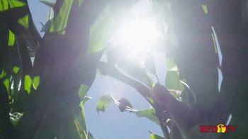 BASF TV Spot, 'Plan Smart, Grow Smart' - Thumbnail 2