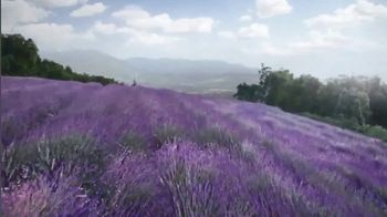 Air Wick Essential Oils TV Spot, 'Ingredients From the Earth' - 11681 commercial airings