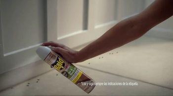 Raid Ant & Roach Killer TV Spot, 'Vaso' [Spanish] - Thumbnail 5