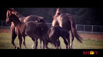 Busby Quarter Horses TV Spot, 'Blazin Jetolena: Offspring' - Thumbnail 4