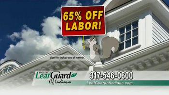 LeafGuard of Indiana TV Spot, 'Eliminate Health Hazards: 65% Off Labor' - Thumbnail 6