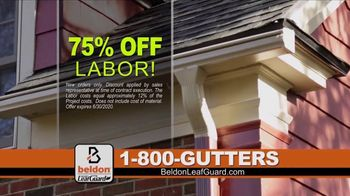 Beldon LeafGuard TV Spot, 'Clogged Gutters: 75 Percent Off Labor' - Thumbnail 3