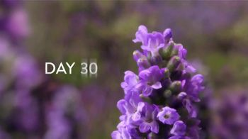 Air Wick Scented Oils TV Spot, '60 Days of Lavender' - Thumbnail 5