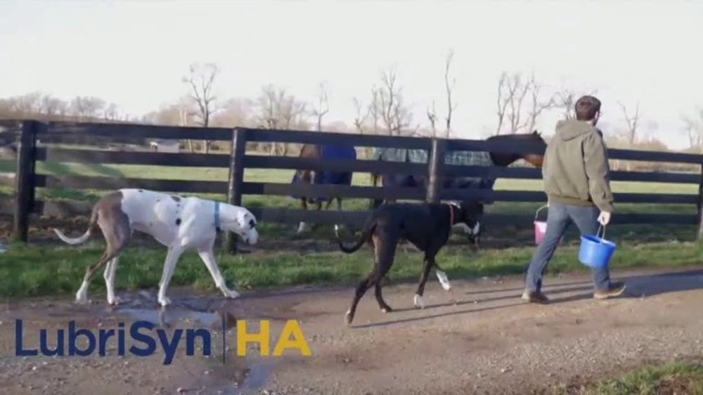 LubriSynHA Pet & Equine TV Commercial, 'Remain Active'