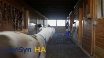 LubriSynHA Pet & Equine TV Spot, 'Remain Active' - Thumbnail 7