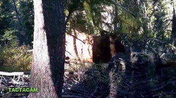 Tactacam TV Spot, 'Share Your Hunt' - Thumbnail 4