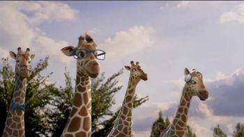 Giraffes: Reopening thumbnail
