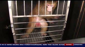PETA TV Spot, 'Psychological Experiments'