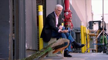 Peacock TV TV Spot, 'Cheers' Featuring Ted Danson - 5 commercial airings