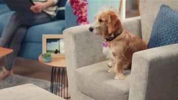 Febreze FABRIC Refresher TV Spot, 'Soft Surfaces' - Thumbnail 1