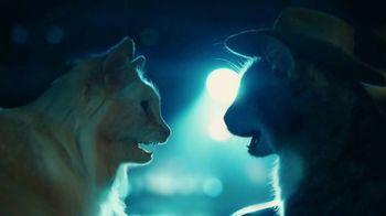 Meow Mix TV Spot, 'Heart & Paws' - Thumbnail 9