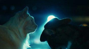Meow Mix TV Spot, 'Heart & Paws' - Thumbnail 8