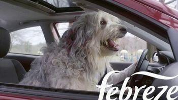 Febreze Car Vent Clips TV Spot, 'Olor de perro' [Spanish] - Thumbnail 1