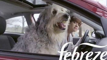 Febreze Car Vent Clips TV Spot, 'Olor de perro' [Spanish] - Thumbnail 2