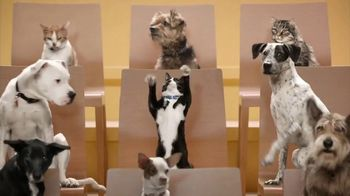 Rachael Ray Nutrish Cat Treats TV Spot, 'Animal Audience' - 3070 commercial airings