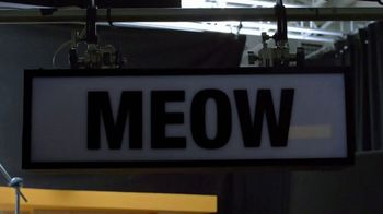 Rachael Ray Nutrish Cat Treats TV Spot, 'Animal Audience' - Thumbnail 6