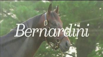 Darley America TV Spot, 'Bernardini: What Connects Them'