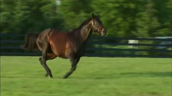 Darley America TV Spot, 'Bernardini: What Connects Them' - Thumbnail 5
