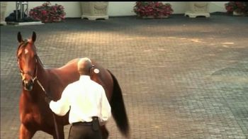 Darley America TV Spot, 'Bernardini: What Connects Them' - Thumbnail 7