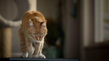 Blue Buffalo TV Spot, 'Lynx Hunger: Earn Rewards'