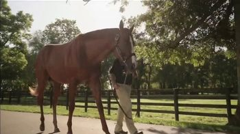 Spendthrift Farm TV Spot, 'Lord Nelson: Pulpit's Last Great Son' - Thumbnail 4