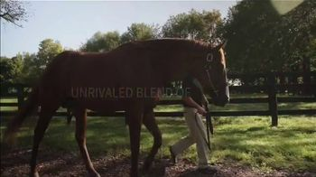 Spendthrift Farm TV Spot, 'Lord Nelson: Pulpit's Last Great Son' - Thumbnail 5