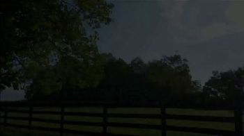Claiborne Farm TV Spot, 'Runhappy: Colts' - Thumbnail 1