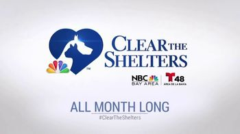 Clear the Shelters TV Spot, 'NBC 11 San Francisco: Gus' - Thumbnail 10