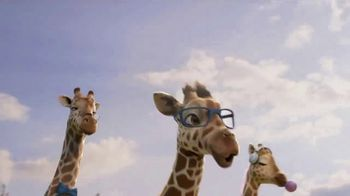 Ark Encounter TV Spot, 'Giraffes: Reopening' - Thumbnail 2