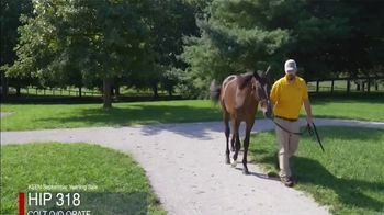 Claiborne Farm TV Spot, 'Runhappy: All the Right Parts' - Thumbnail 9