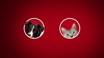 Purina ONE TV Spot, '28 Days: Protein-Rich Dry Food' - Thumbnail 1