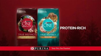 Purina ONE TV Spot, '28 Days: Protein-Rich Dry Food' - Thumbnail 10