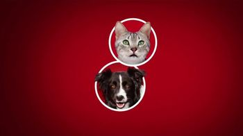 Purina ONE TV Spot, '28 Days: Protein-Rich Dry Food'