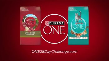 Purina ONE TV Spot, '28 Days: Protein-Rich Dry Food' - Thumbnail 8