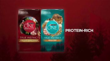 Purina ONE TV Spot, '28 Days: Protein-Rich Dry Food' - Thumbnail 9