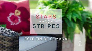 Ashley HomeStore Venta de Stars and Stripes TV Spot, 'Este fin de semana' [Spanish] - Thumbnail 2